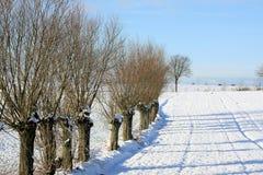 De winter in het platteland Stock Foto's