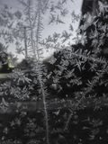 De winter is hier stock foto's