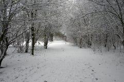De winter in Holland Royalty-vrije Stock Afbeeldingen