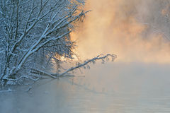 De winter, Kalamazoo-Rivier in Mist royalty-vrije stock afbeelding
