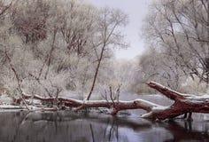 De winter kalme rivier Stock Afbeeldingen