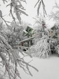 De winter in Kansas stock afbeelding