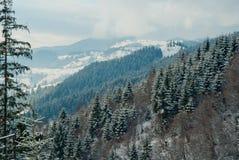 De winter Karpatische die bergen, met sneeuw, panoramamening worden behandeld Royalty-vrije Stock Foto