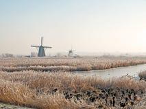 De winter in Kinderdijk Stock Afbeelding