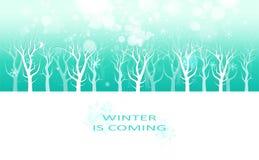 De winter is komend bericht, de creatieve van van de kaartbanner, sneeuwvlokken en sterren van de afficheuitnodiging viering van  stock illustratie