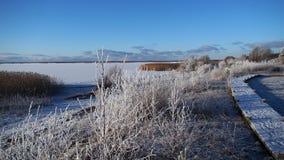 De winter komst Stock Afbeeldingen