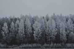De winter komt Bevroren overzees Niets sloeg rotsen stock afbeeldingen