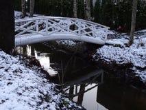 De winter komt in orde en is elk ding? Stock Foto