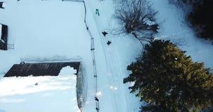 De winter, koud bos in Siberië stock videobeelden