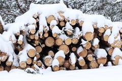 de winter, koude, het sneeuwen Bos voor verwerking wordt gezaagd die Gestapeld in een stapel de sneeuw wordt gegoten stock foto