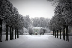 De winter in Kuskovo Royalty-vrije Stock Foto