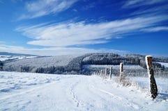 De winter landcscape Stock Foto's
