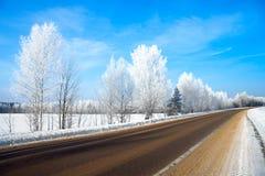 De winter landelijk landschap met de weg bos en blauwe sk Stock Afbeelding