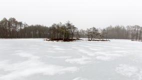 De winter landelijke scène met mist en witte gebieden Stock Foto