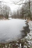 De winter landelijke scène met mist en bevroren rivier Stock Foto's
