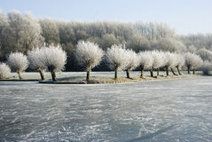 De winter landscape3 Royalty-vrije Stock Afbeelding