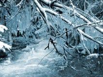 De winter. Landschap Stock Foto's