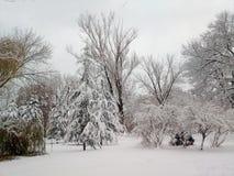 De winter landschap-bomen met sneeuw worden behandeld die stock foto