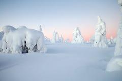 De winter in Lapland stock foto