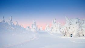 De winter in Lapland royalty-vrije stock afbeelding