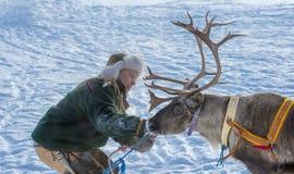 De winter in Lapland, Zweden, Norrbotten Royalty-vrije Stock Afbeelding