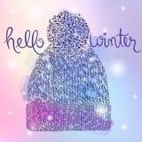 De winter leuke kleurrijke hoed Stock Fotografie