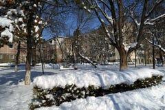 De winter in Maart in stadspark 2 stock foto