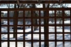 De winter in Maart in stadspark 3 stock foto's