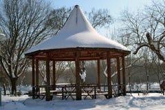 De winter in Maart in stadspark 5 royalty-vrije stock foto