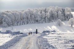 De winter magische scène op een Berg in Roemenië Stock Foto