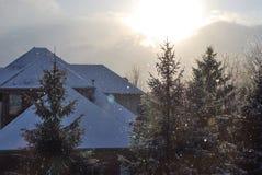 De winter in Michigan Stock Foto's