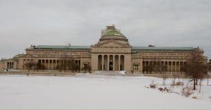 De winter MOSI stock afbeelding