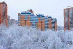 De winter in Moskou Rusland Stock Foto's