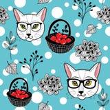 De winter naadloze klomp met rode bessen op de sneeuw en de slimme katten Royalty-vrije Stock Fotografie