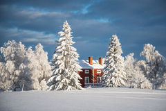 De winter in noordelijk Zweden Stock Afbeelding