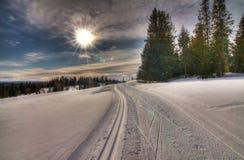 De winter in Noorwegen Royalty-vrije Stock Afbeelding