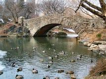 De winter in NYC 1 Royalty-vrije Stock Foto