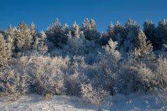 De winter op de pas Stock Afbeeldingen