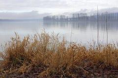 De winter op Fraser River royalty-vrije stock afbeelding