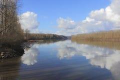 De winter op Fraser River stock foto