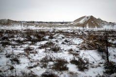 De winter op het gebied Stock Afbeeldingen