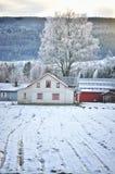 De winter op het landbouwbedrijf Royalty-vrije Stock Fotografie