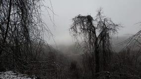 De winter op Ronde Knop Stock Afbeeldingen