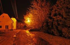 De winter op de straten met bomen, elektrische lood en lichten royalty-vrije stock afbeelding