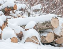 De winter opent Sneeuw het programma Stock Afbeeldingen