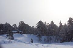De winter oranje zonsondergang op Valdai stock foto's