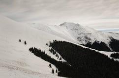 De winter in Parang-Bergen royalty-vrije stock afbeelding