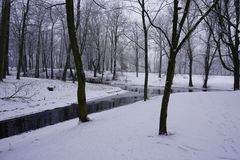 De winter in Park 1 Stock Afbeeldingen