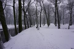 De winter in Park 4 Stock Afbeelding