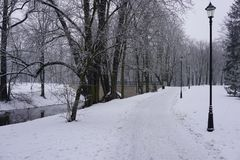 De winter in Park 7 Stock Foto